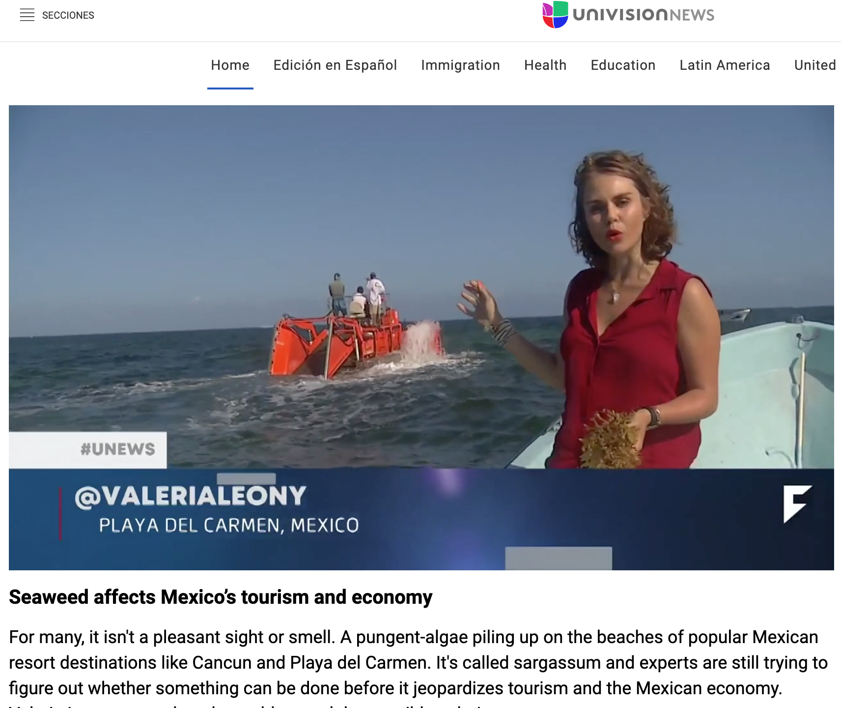Seaweed affects Mexico's tourism and economy – Valeria Leon